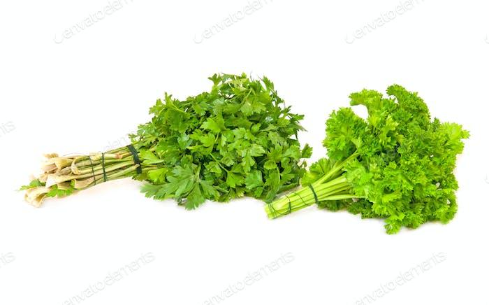 parsley isolated