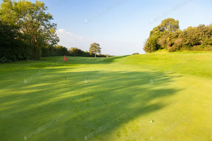 Putting green and ball on golf course