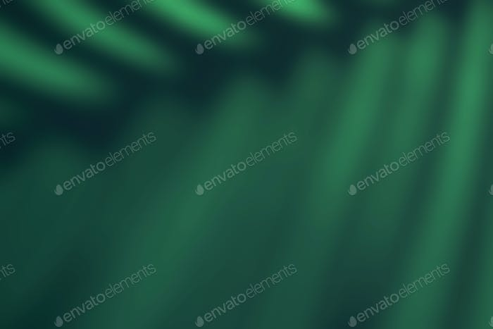 Beautiful fern leaves green shadow colored background in artificial light