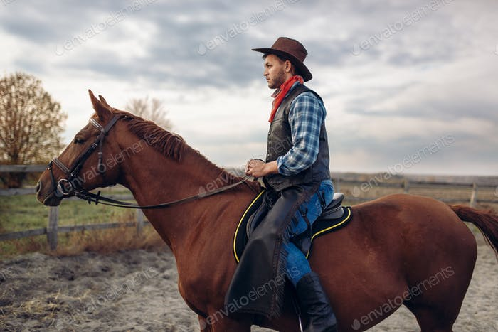Cowboy riding a horse on texas farm