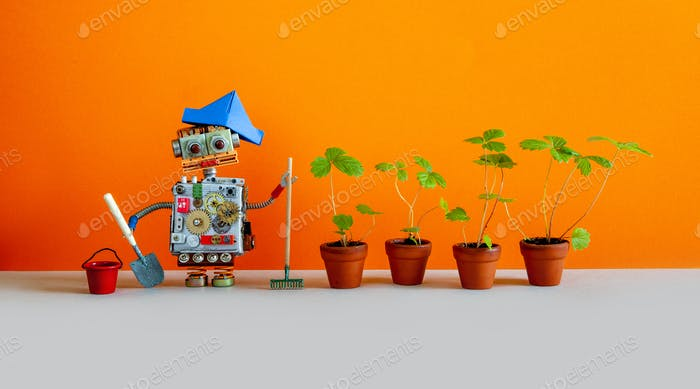 Toy gardener robot with bucket shovel rake and sprouts