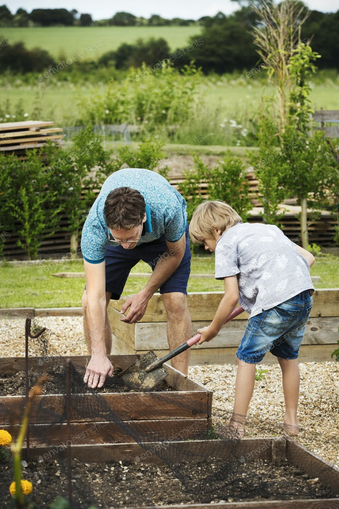 Man and boy standing at a plant bed in a garden, boy holding a spade.