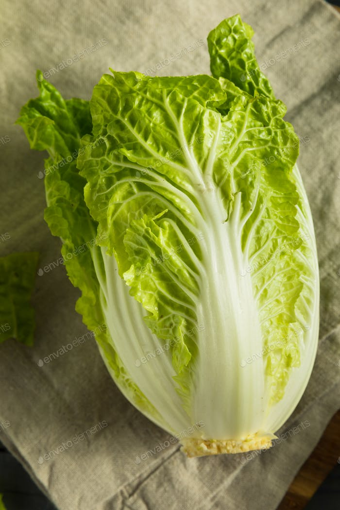 Raw Green Organic Napa Cabbage