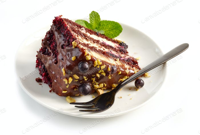 piece of chocolate and blackcurrant cake