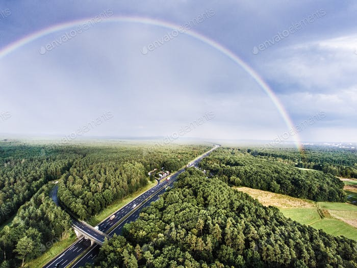 Highway in green forest, colorful rainbow, city. Netherlands