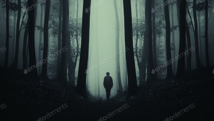 Dark mysterious silhouette in scary forest