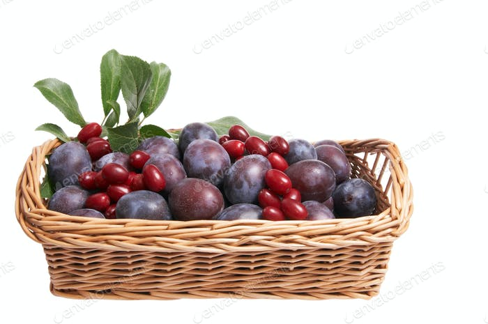 Juicy fruits in the basket.