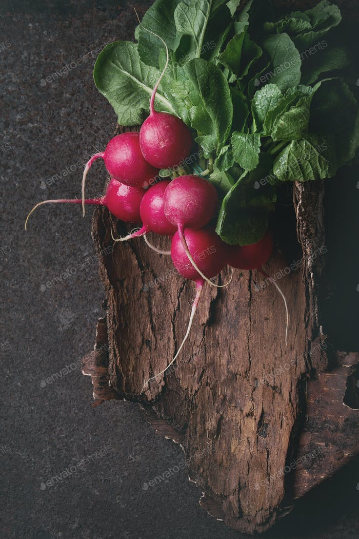 Fresh radish bundle