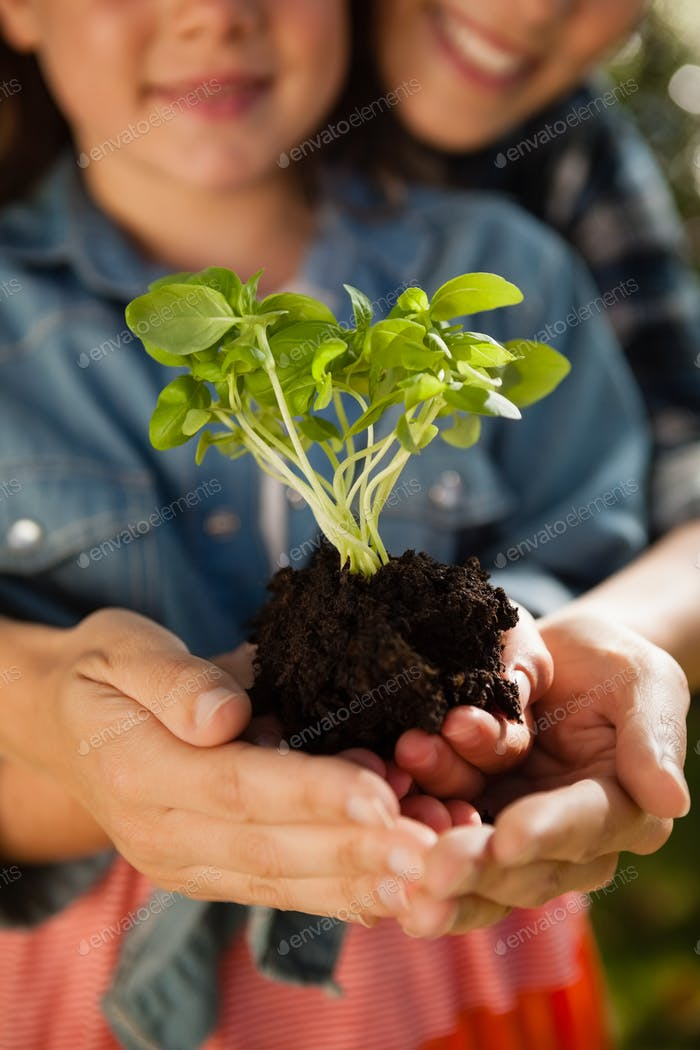 Mid section of mother and daughter holding seedling