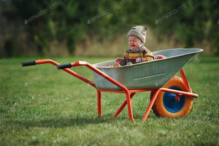 niedlich kleiner Junge sitzen in Schubkarre