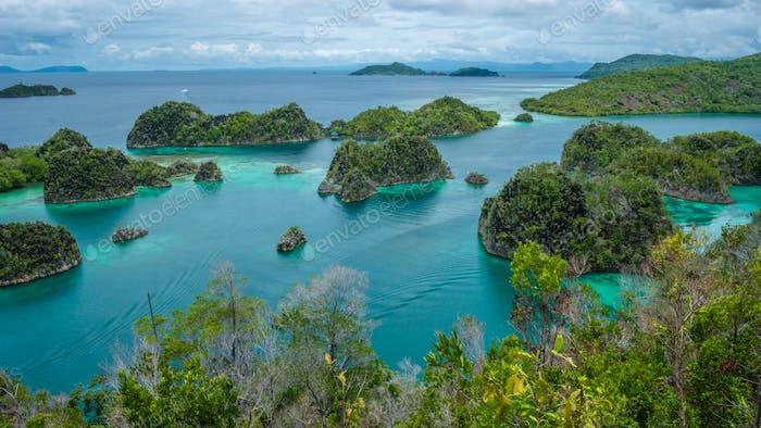 Painemo Island,Blue Lagoon, Raja Ampat, West Papua, Indonesia