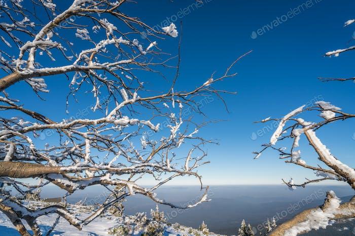 Winter landscape in  Karkonosze