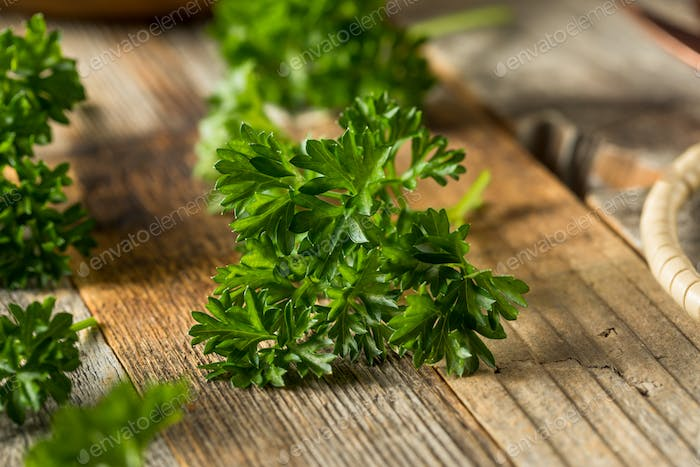 Raw Green Organic Curly Parsley