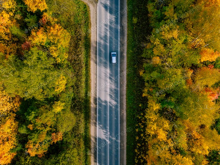 Aerial view of road in autumn forest. Beautiful landscape with  rural road, trees