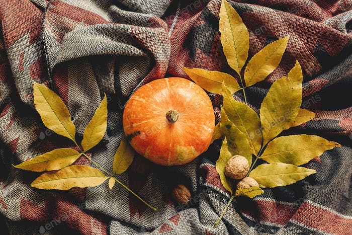 Autumn pumpkin with colorful leaves and walnuts on stylish hipster fabric scarf
