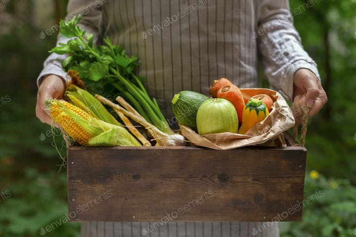 Woman holding big basket with vegetables from garden