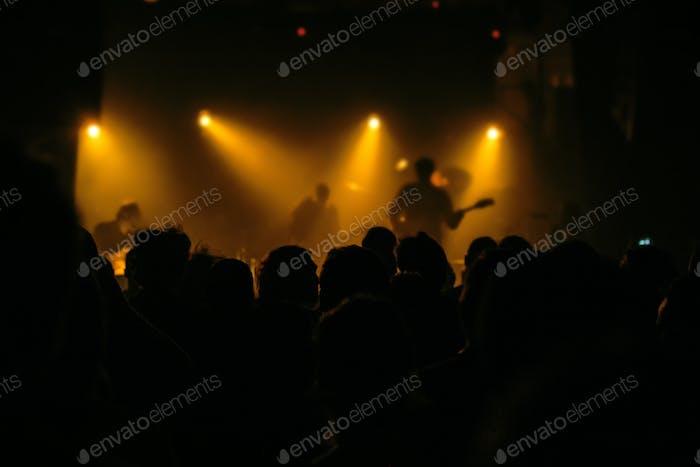 Musikkonzert-Publikum, Menschen genießen Live-Rock-Performance
