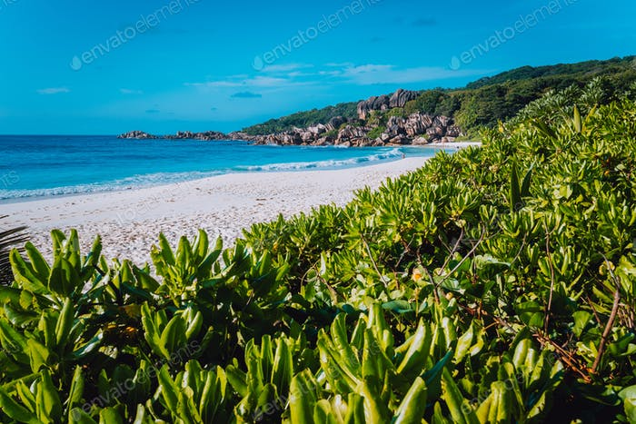 The greatest beach Grand Anse on La Digue Island, Seychelles with granite rock formations, white