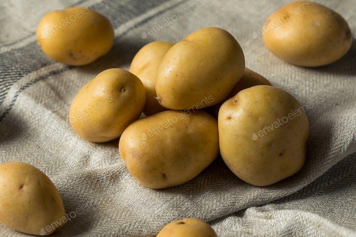 Raw Organic Yellow Baby Potatoes