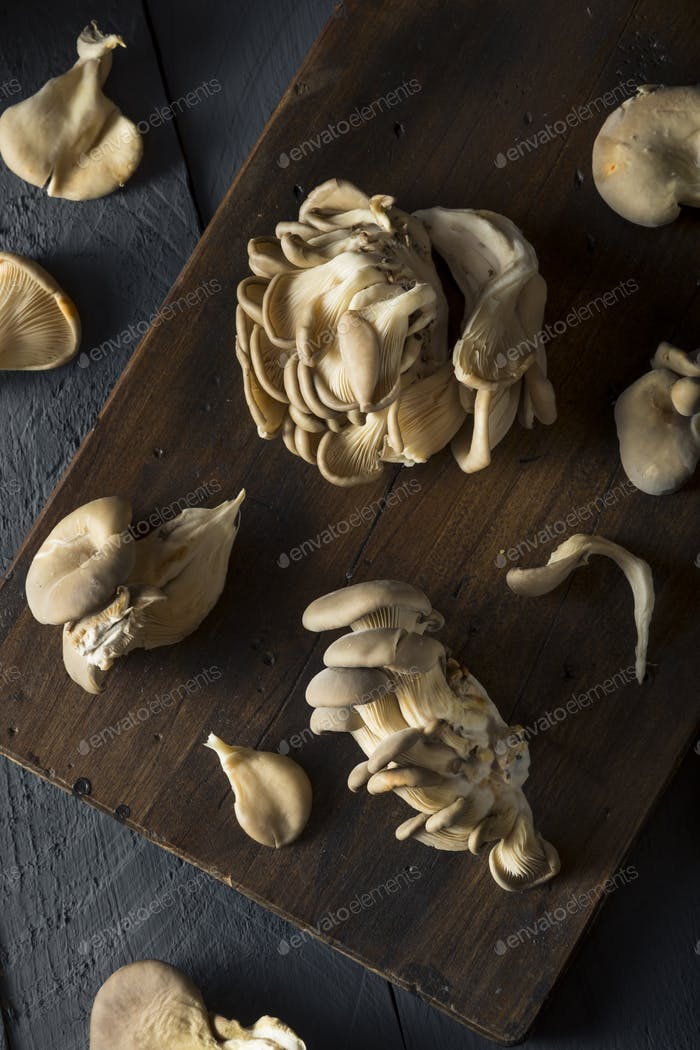 Raw Organic Oyster Mushrooms