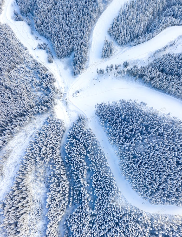 Winter forest and ski slopes from air. Winter aerial landscape. View from drone