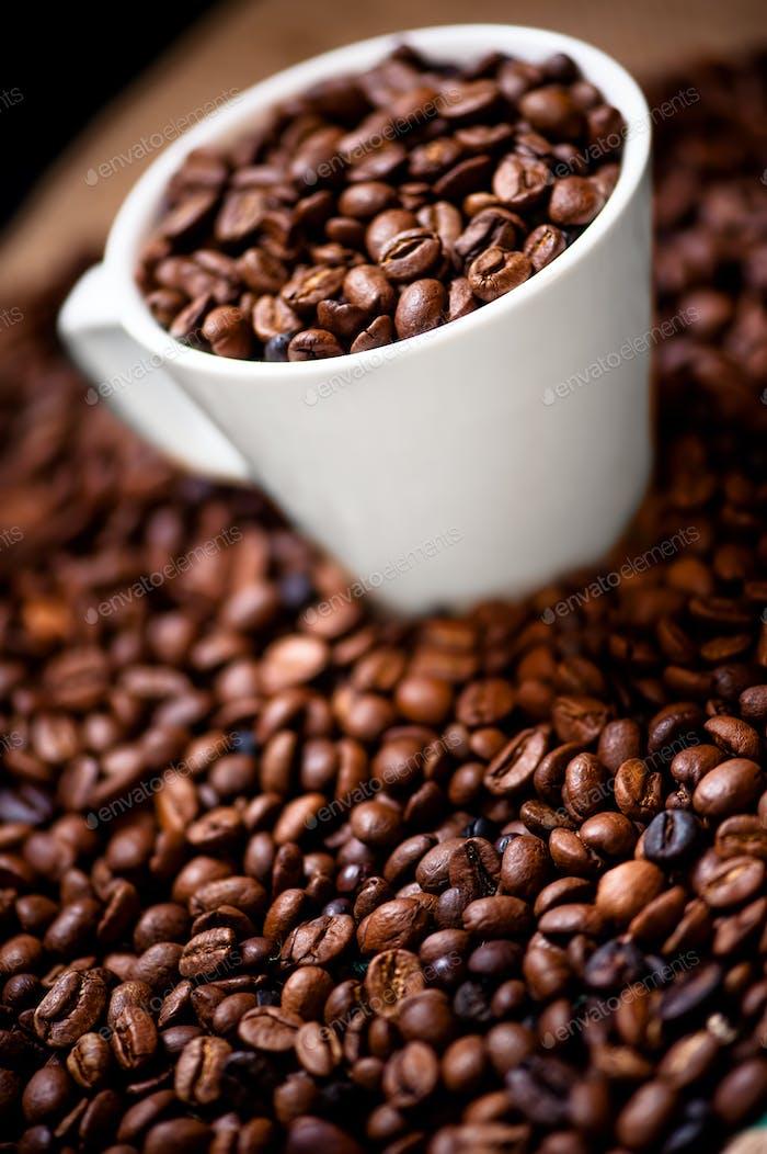Frische weiße Tasse heiße brasilianische Kaffeebohnen