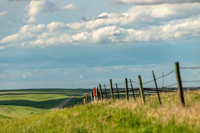 Rural road in farmland