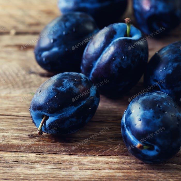 Blue organic plums on dark wooden background. Copyspace
