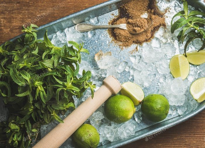 Ingredients for making mojito summer cocktail on ice in tray