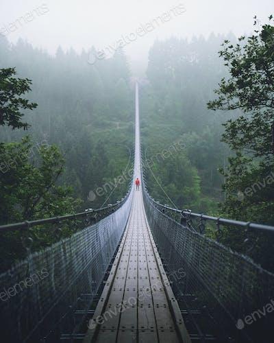 Hanging bridge in Germany