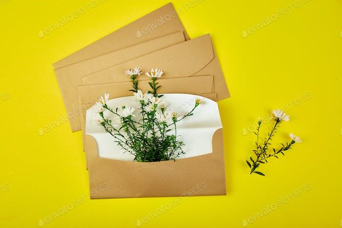 Flower in envelope