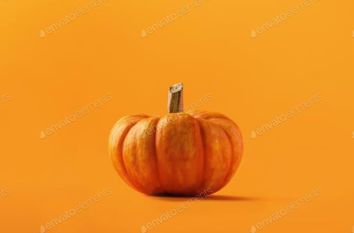 Pumpkins on orange background. Monochrome image