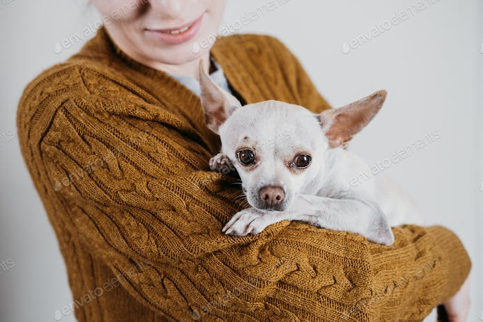 Pet love, homeless dog adoption, caring for a pet and animal concept. Pet Lovers, Animal Lovers