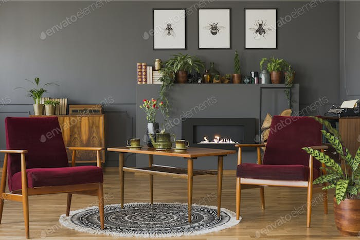 Dark red wooden armchairs in vintage flat interior with posters