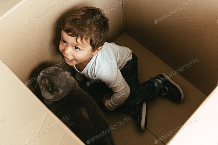 Little Boy Playing With Cat in Cardboard Box