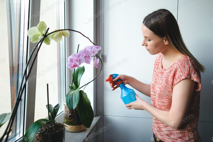 Attractive woman watering flowers in the apartment