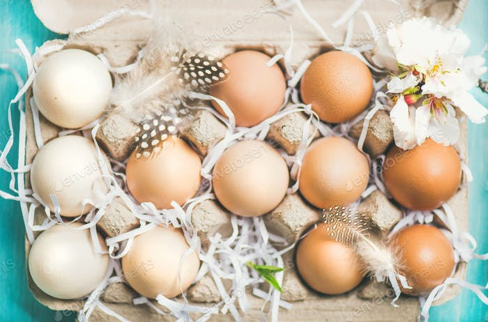 Natural colored eggs for Easter in box, blue background, close-up