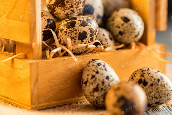 Quail eggs on old brown wooden surface