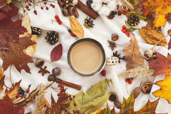 Coffee cup with  fall leaves,berries, anise,herbs, acorns, nuts , cinnamon, cotton
