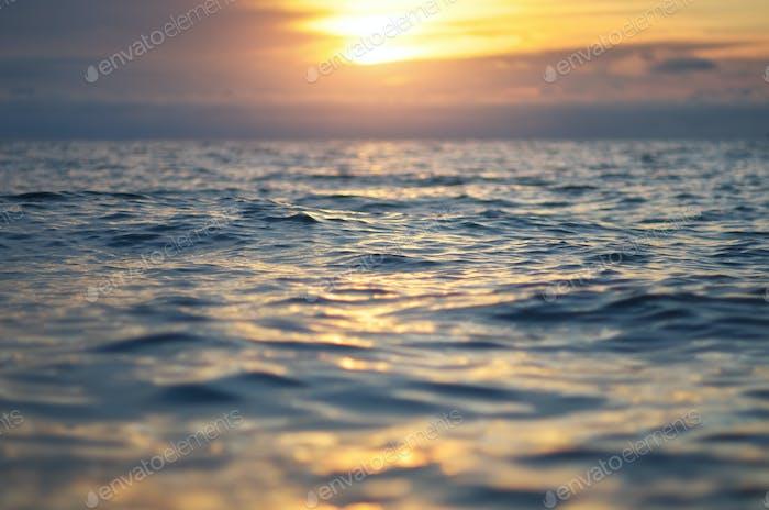 Wave on sea sunset.