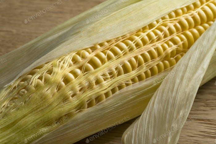 Corn on the cob close up