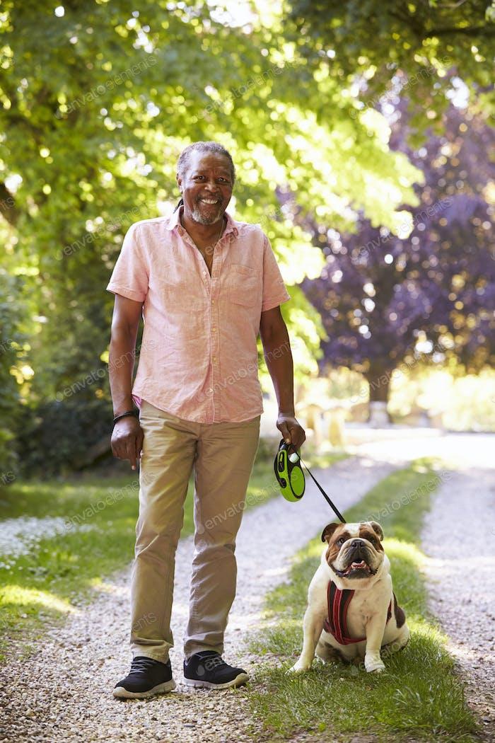 Portrait Of Senior Man Walking Pet Bulldog In Countryside