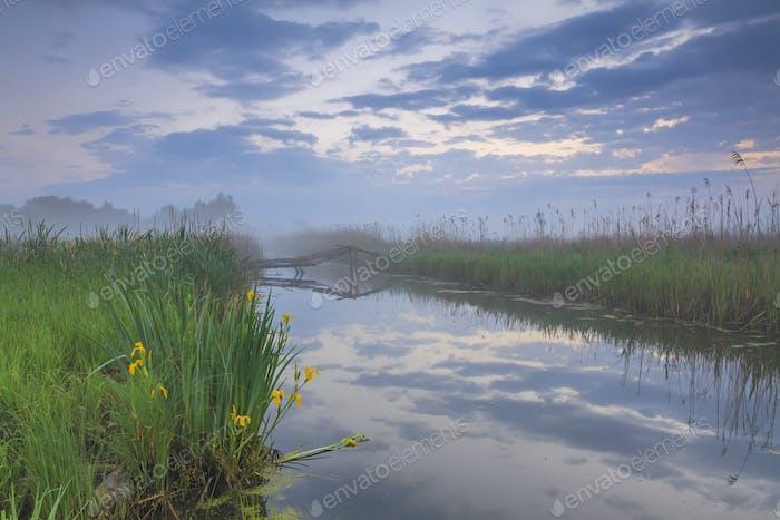Nebel Morgendämmerung auf dem Fluss