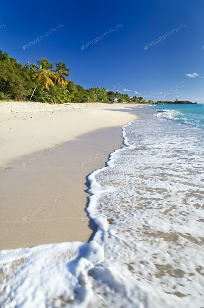 Perfect Caribbean Beach, Antigua