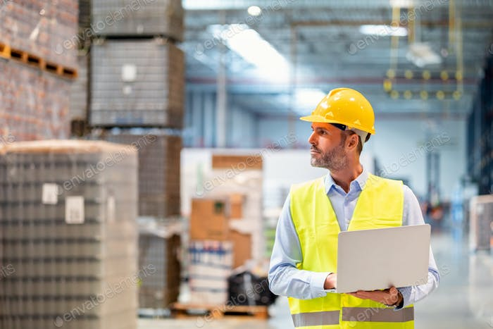 Warehouse manager with laptop entering inventory data to database