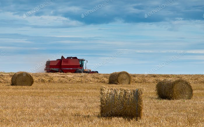 Thumbnail for combine harvesting