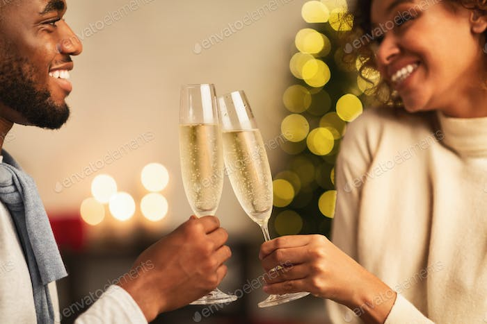 Cheers! Cute spouses clinking champagne glasses at home