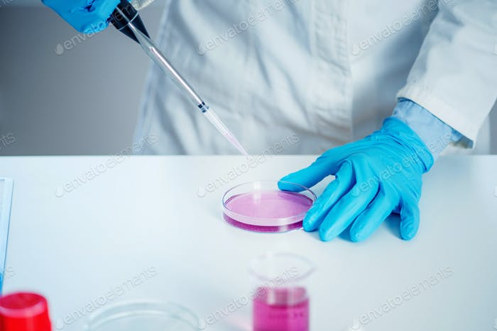 Laboratory technician with micro pipette