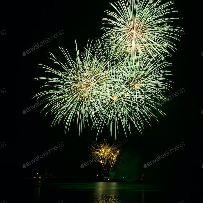 Green firework over the water in the night sky