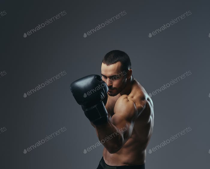 A brutal shirtless caucasian sportsman in boxing gloves training isolated on a gray background.
